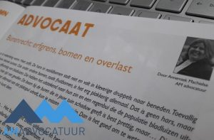 Bomen Op Erfgrens.Burenrecht Erfgrens Bomen En Overlast Am Advocatuur In Veldhoven